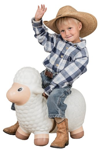 Big Country Toys Little Mutton Buster
