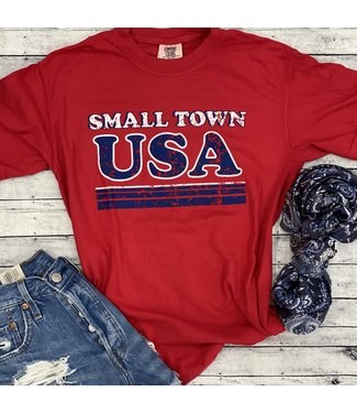 Rosebud's Designs Small Town USA