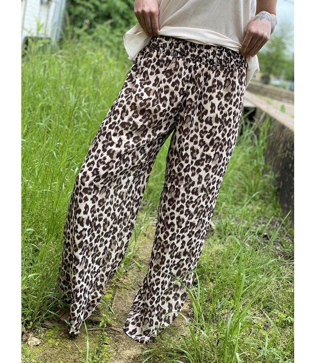 Turquoise Haven Cheetah Chiffon pant