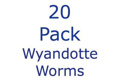 20 Pack