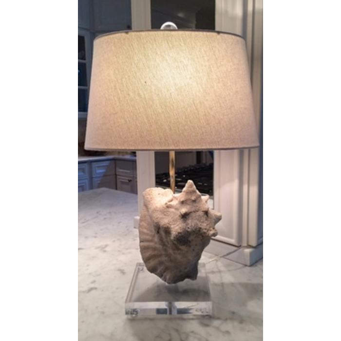 Patricia Conch Shell Table Lamp, natural with showroom shade
