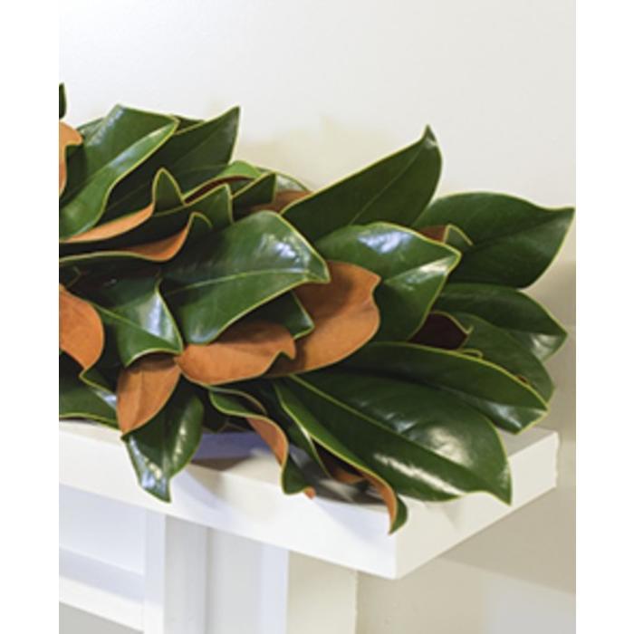 The Original Magnolia Garland 10'