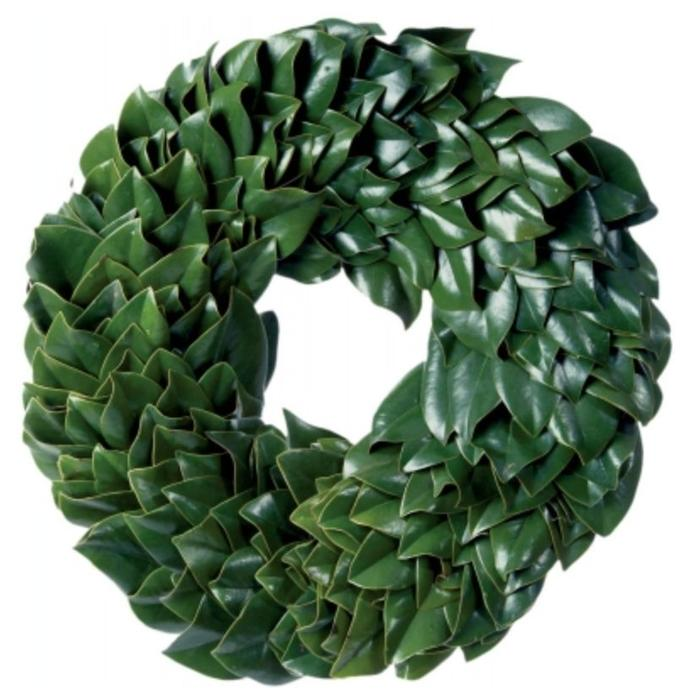 All Green Magnolia Wreath 24""