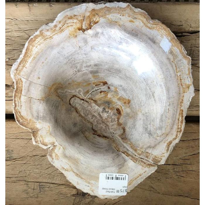 Petrified Wood Soap Dish