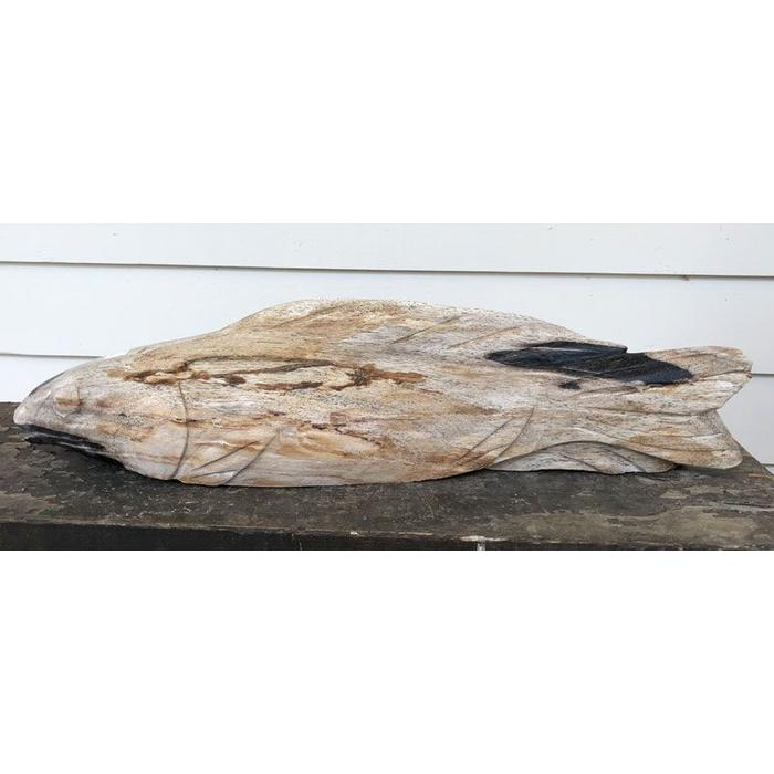 Petrified Wood Koi - Small