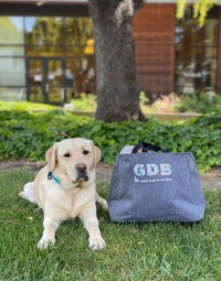 GDB Letters tote - Heather Grey