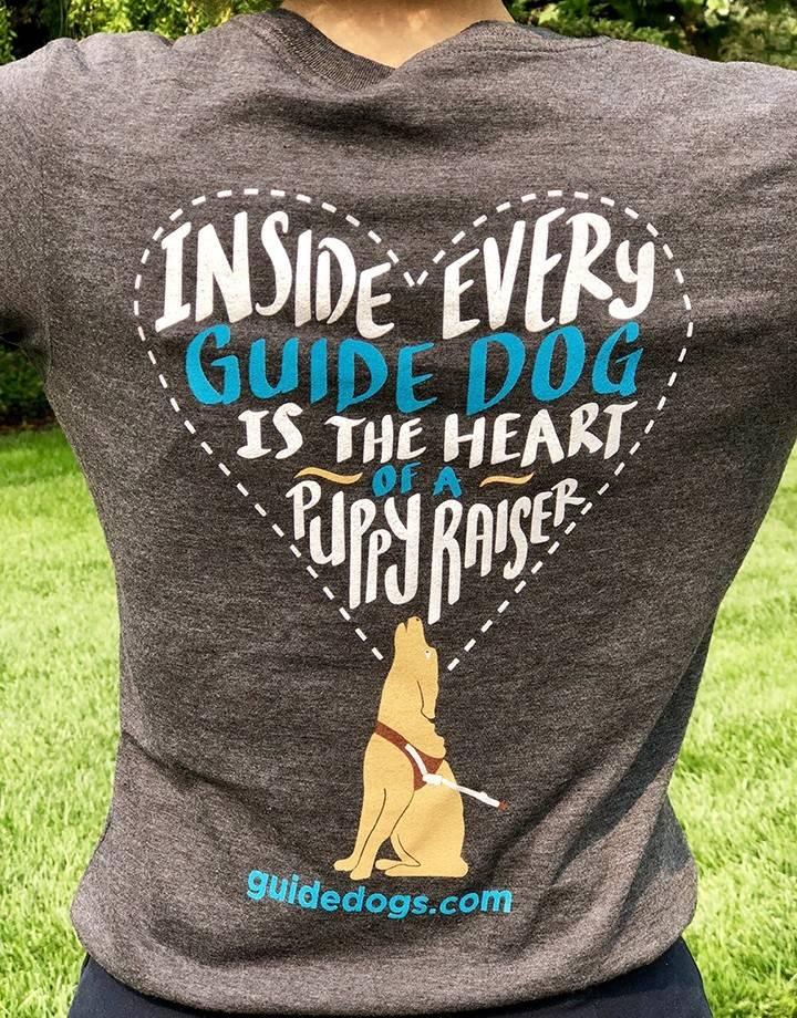 Women's v neck  tee - inside every guide