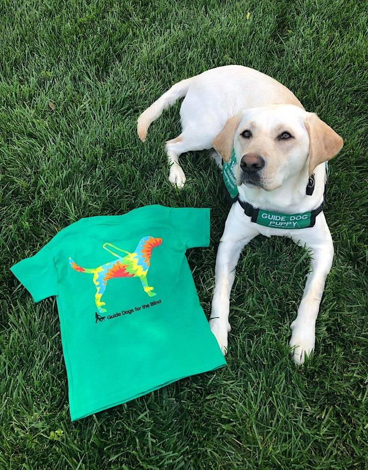 Youth tee - guide dog with tiedye