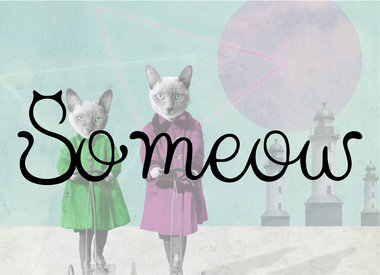 So Meow