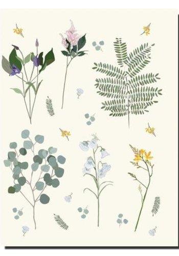 C6 Cahier 6x8 Botanique