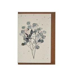 Lili Graffiti Plantable seed card -- Botany