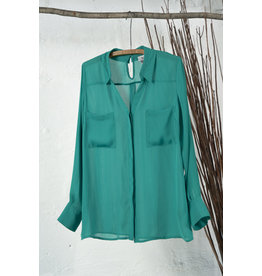 Sheer Button Down Kelly Green