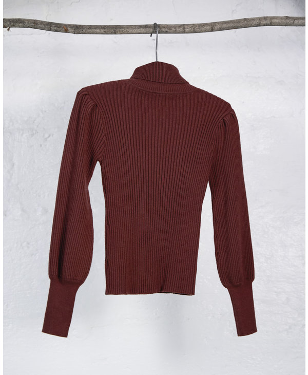 Burgundy Knit Turtleneck