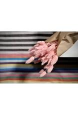 Atelier Pepite Pink Phalaris bouquet
