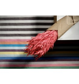 Atelier Pepite Pink wheat bundle
