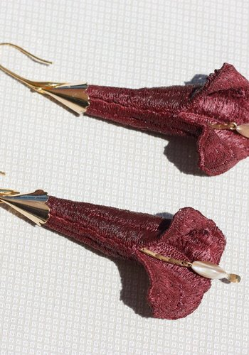 Brugmansia - 2 couleurs