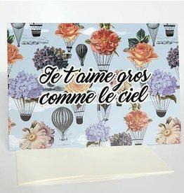 Merci Bonsoir par Marie-Claude Marquis Je T'aime Gros Comme Ciel Greeting Card
