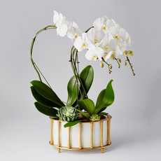 Cachepot - Cavalcade - Brass/White