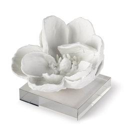 Object - Magnolia on Acrylic - White - 5Hx6Hx6W