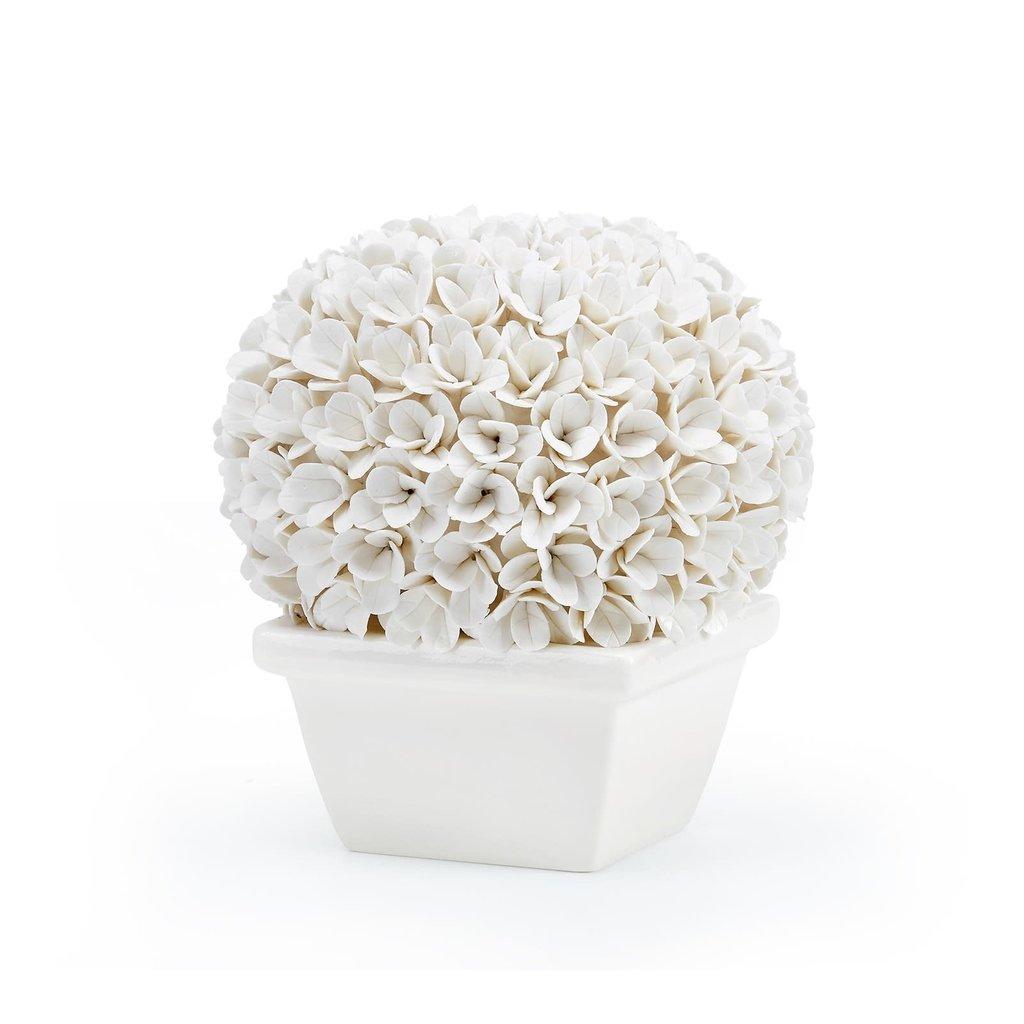 Topiary - Boxwood - White Porcelain -  Boston - Round - 7.5Wx7.5Dx8H