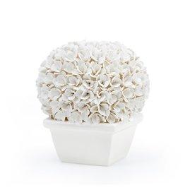 MH Topiary - Boxwood - White Porcelain -  Boston - Round - 7.5Wx7.5Dx8H