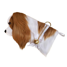 Stocking - Dog -  Cavalier