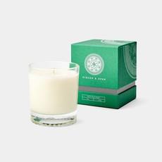 MH Gibson & Dehn -  8 0z Candle - Saratoga - White Tea & Cedar