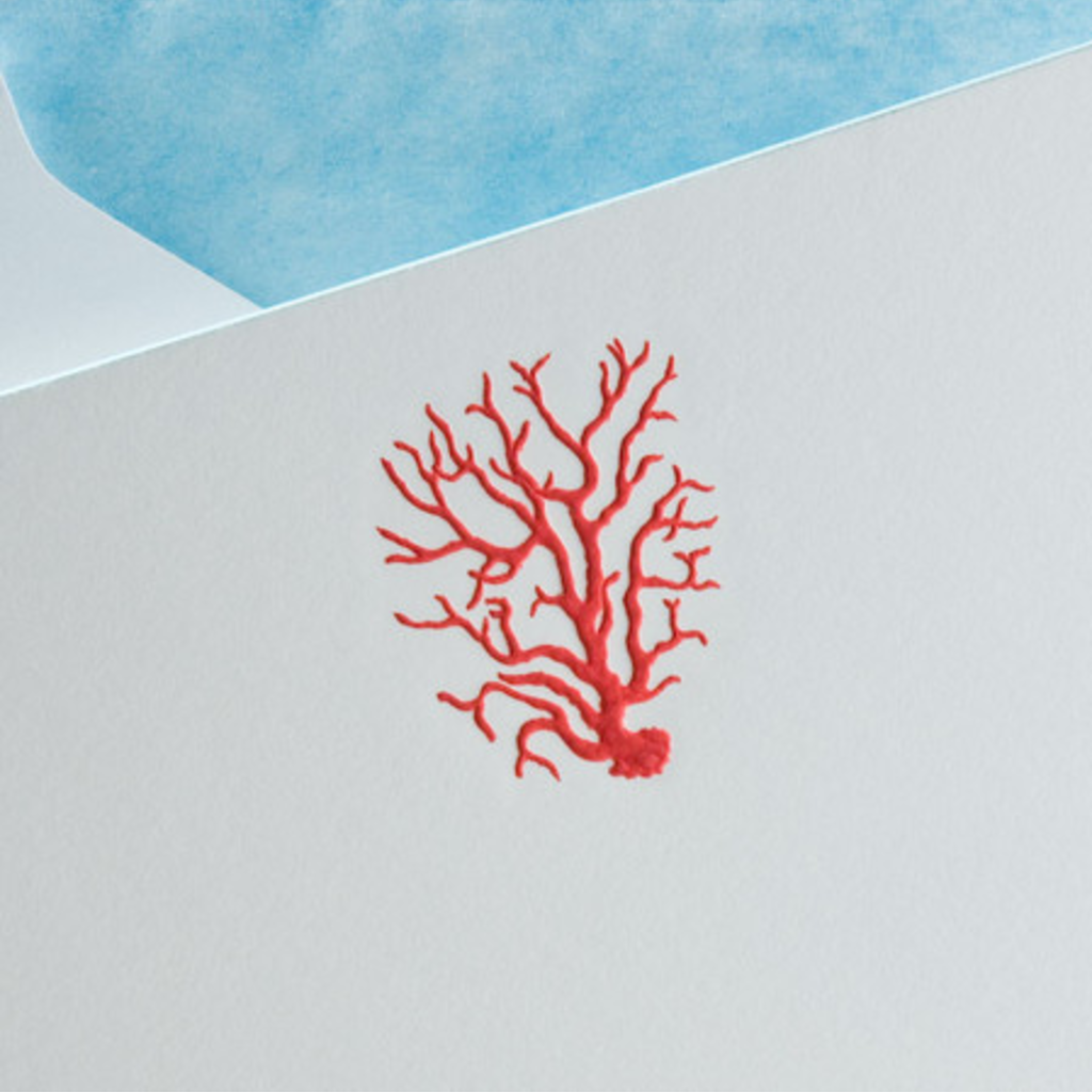 The Printery Boxed Notecards - Coral - Red Poppy w/Azure Blue Border