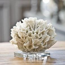 MH Coral - White Ribbon on Acrylic Base