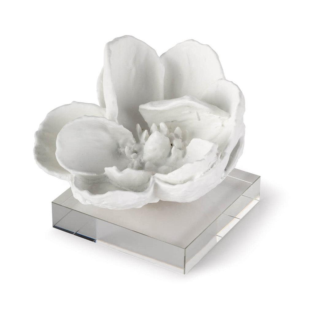 MH Object - Magnolia on Acrylic - White - 5Hx6Hx6W