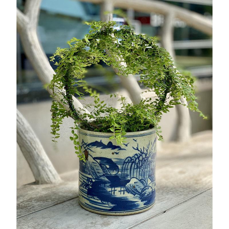 MH Cachepot Planter - Blue & White - Landscape - Small