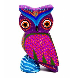 Small Owl Aleberije