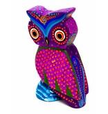 Small Owl Aleberije (Zapotec)