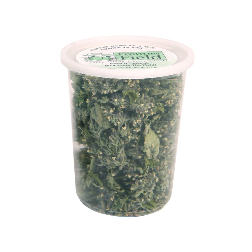 FROM THE FIELD LLC Catnip Buds in a Tub