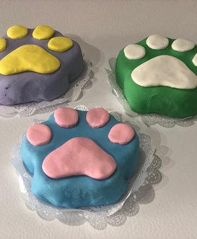 Pawty Paw Dog Birthday Cakes