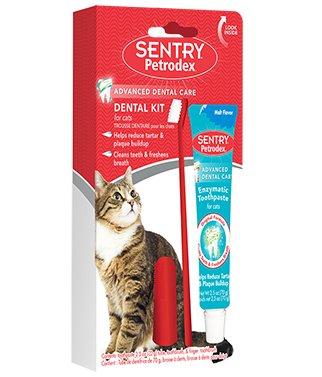 Petrodex Cat Dental Kit