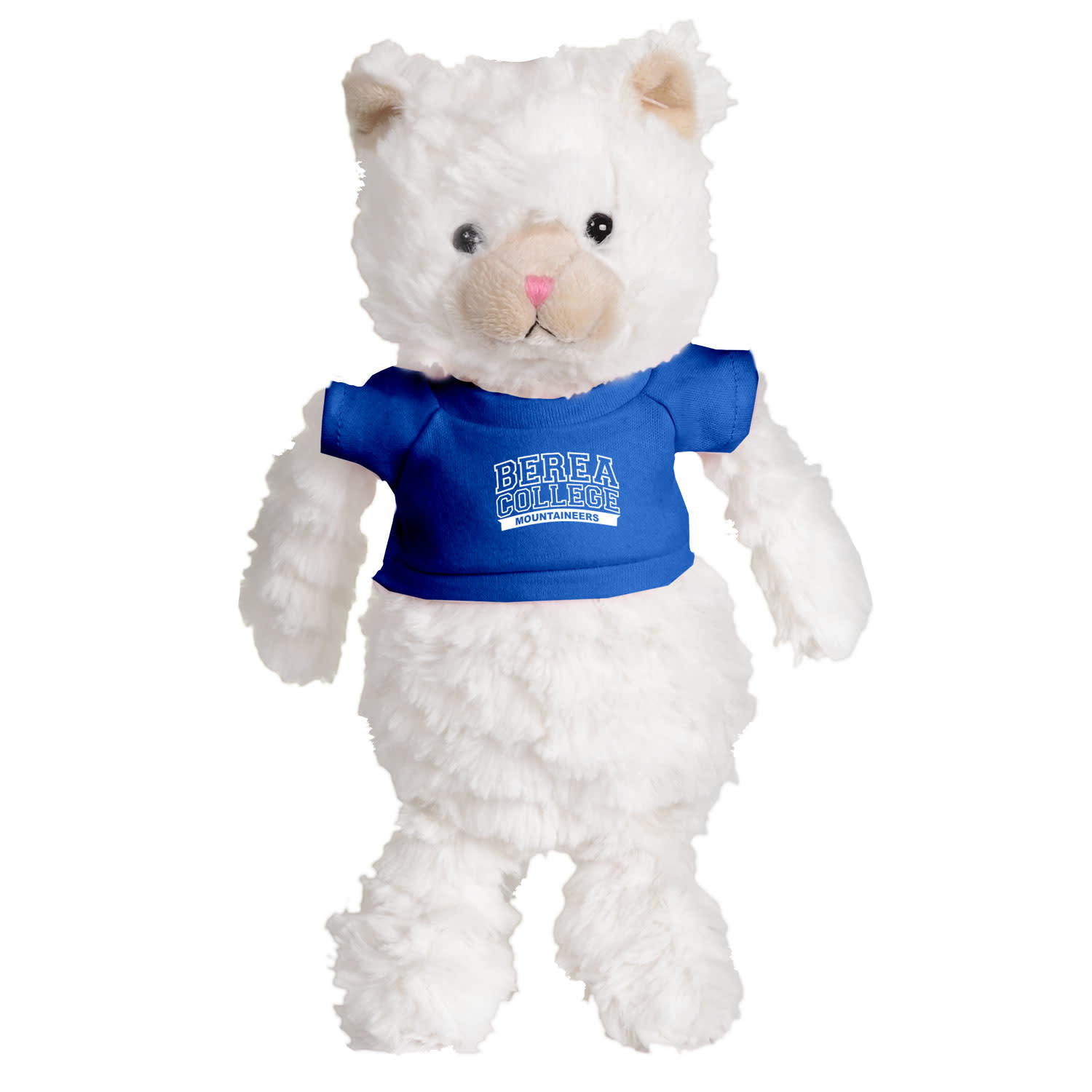 Plushie with Blue Berea College T-shirt-1