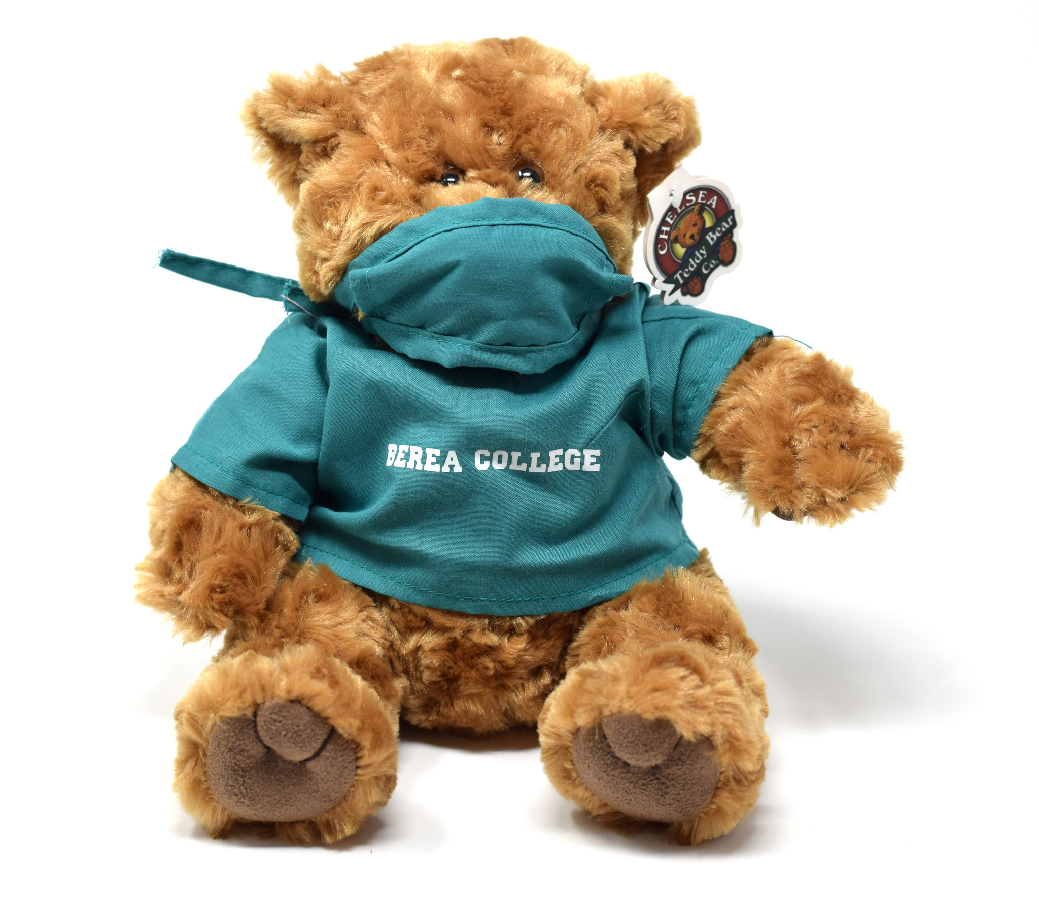 Berea College Nurse Bear-1