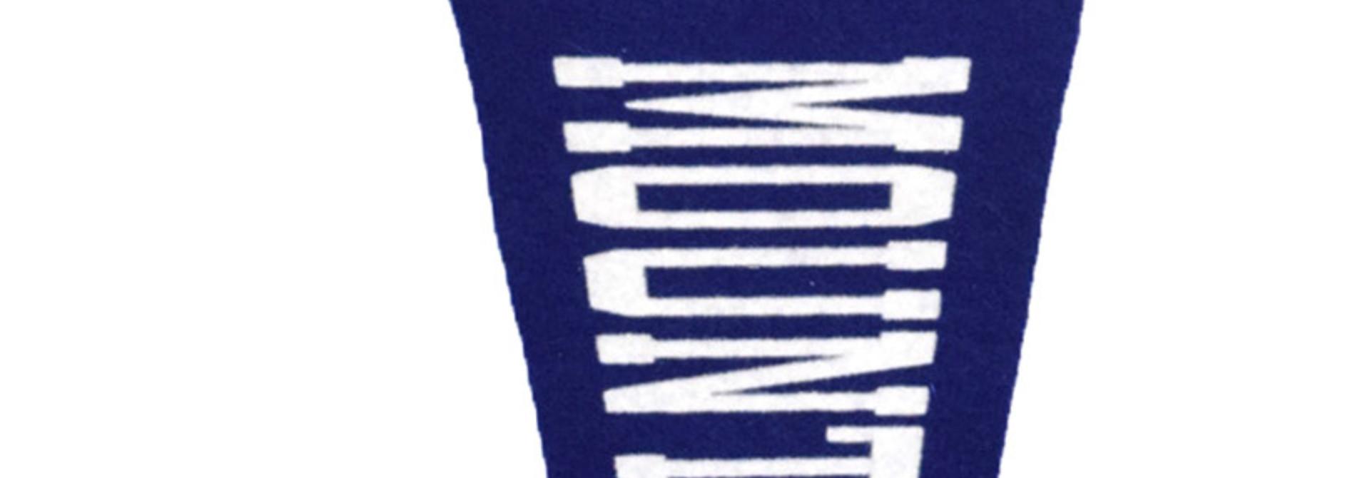 Circle Logo Mountaineers Pennant