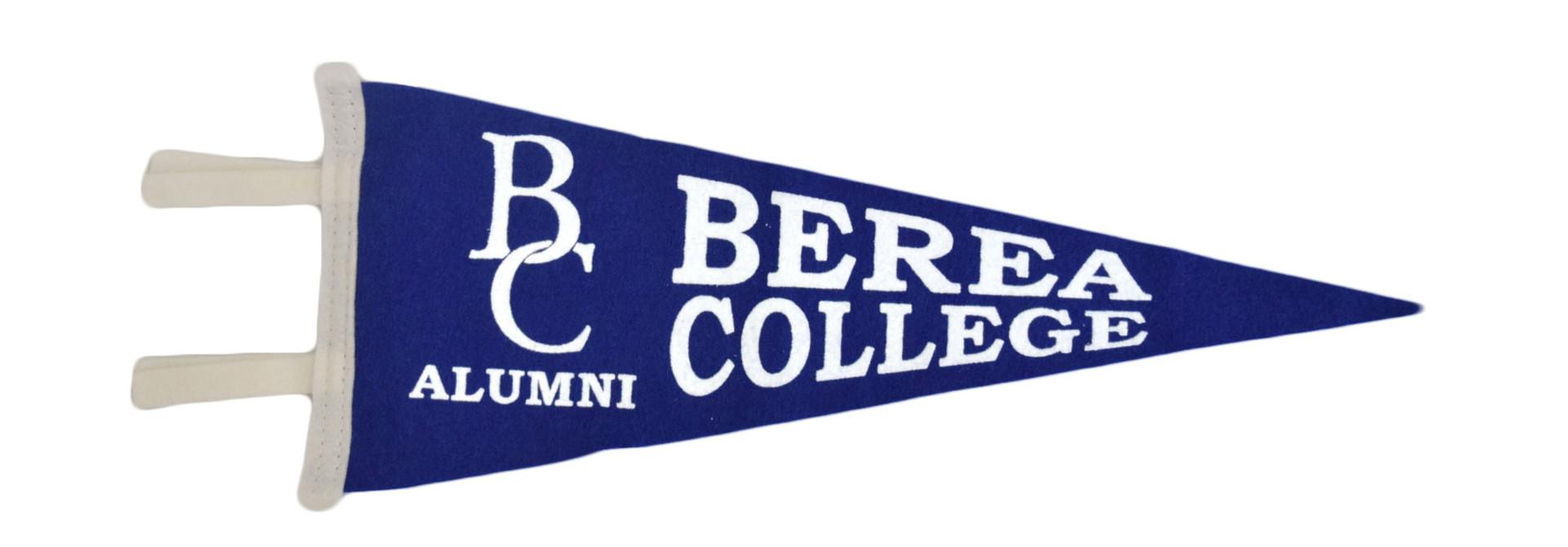 Blue Alumni Pennant