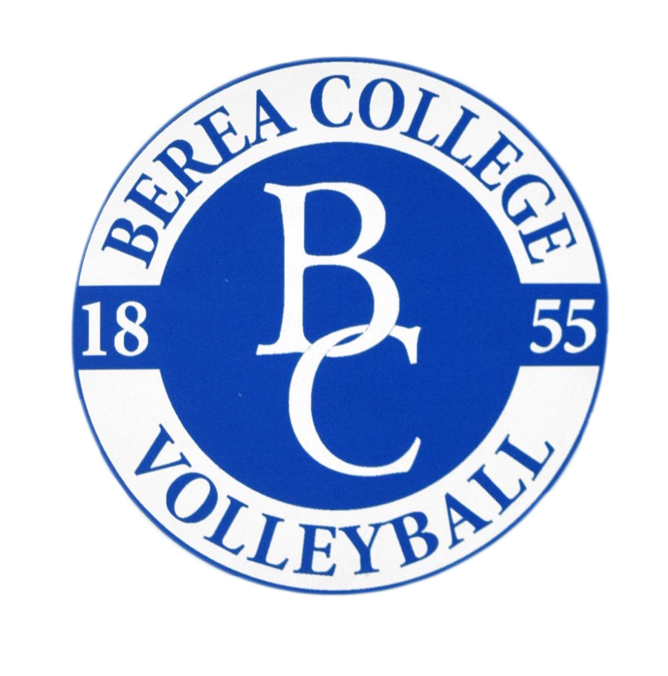 Volleyball Decal-1