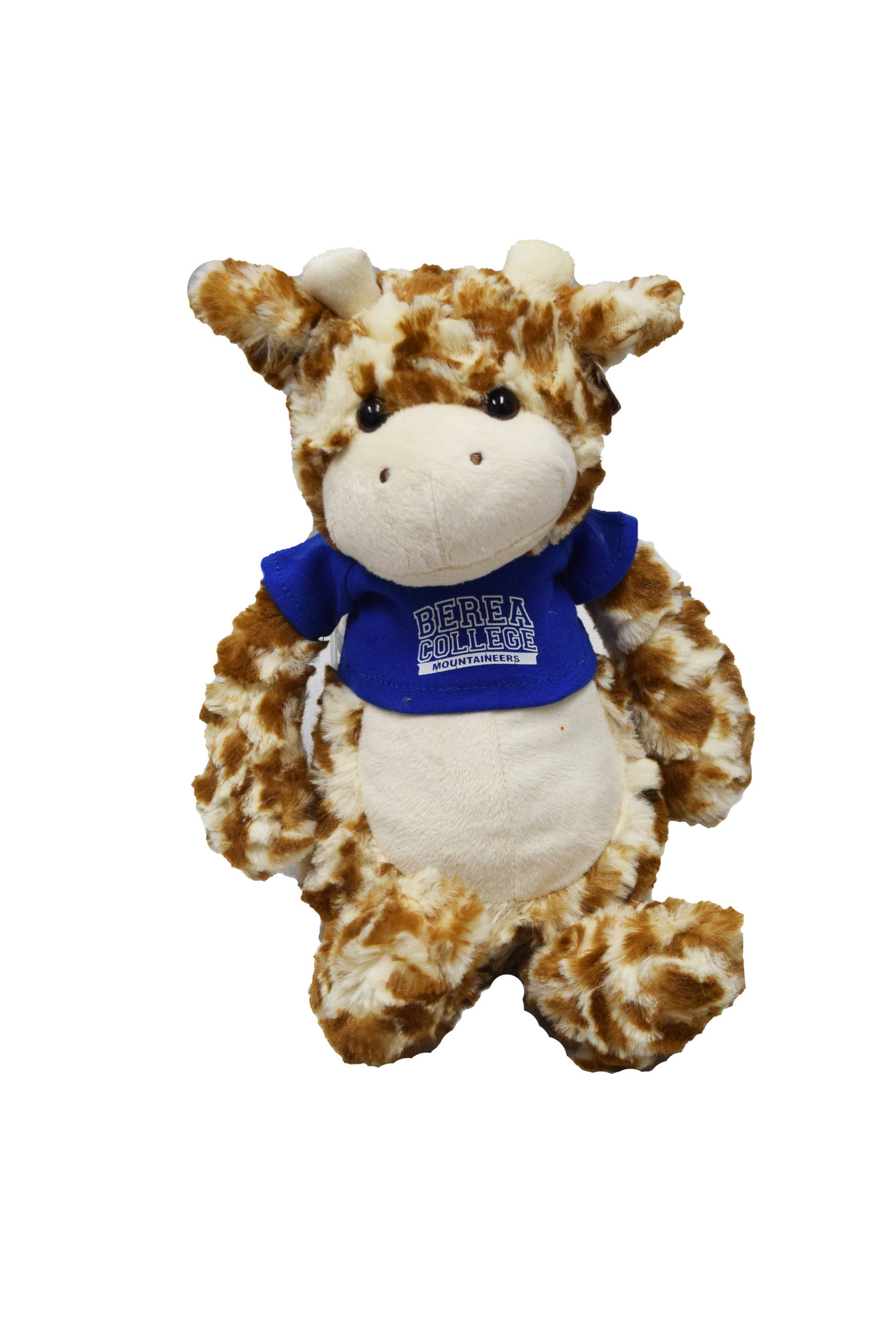 Plushie with Blue Berea College T-shirt-4