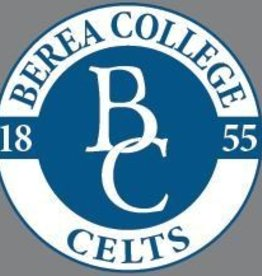 Potter Decals CELTS Decal