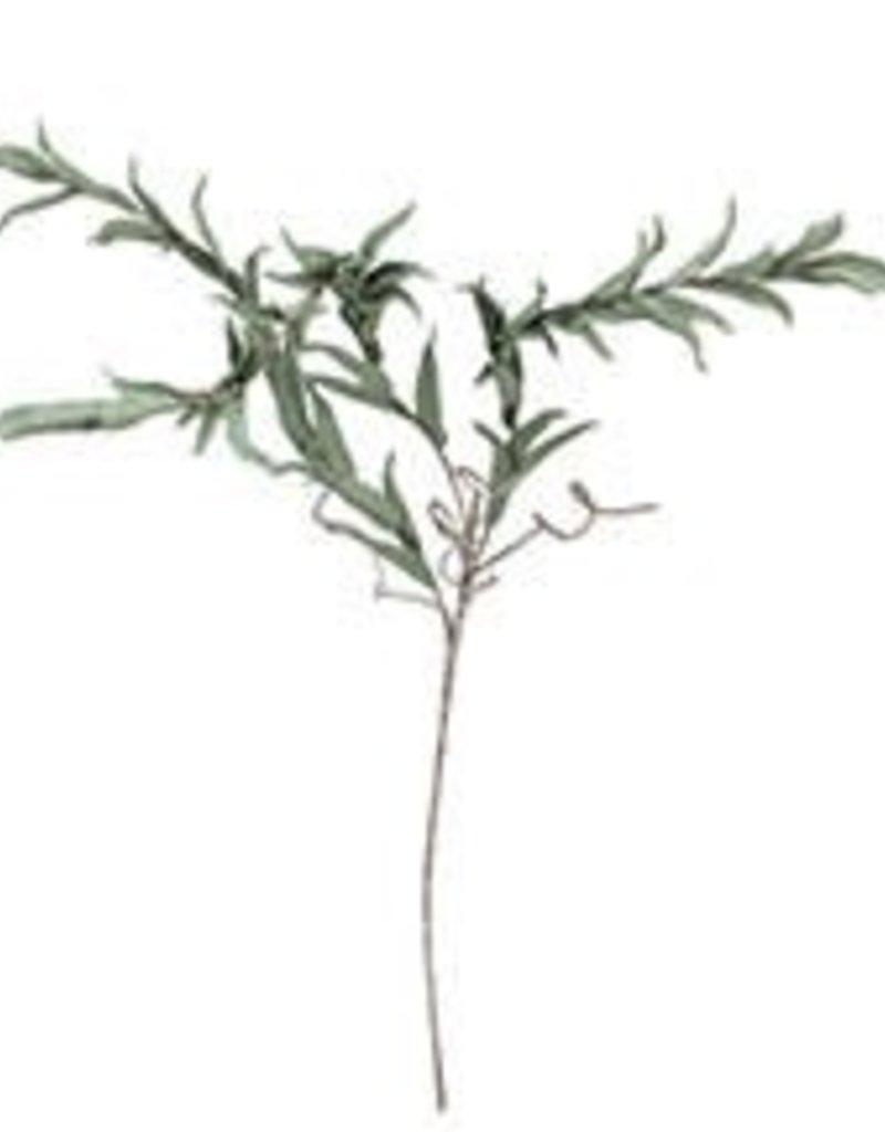 Botanica#942