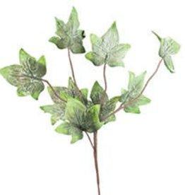 Botanica#1307