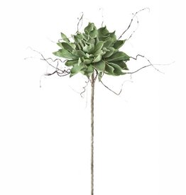 Botanica #372 Green Magnolia With Frayed Sticks