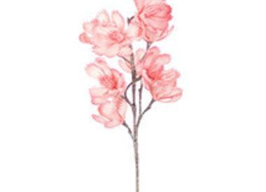 Botanica Flowers