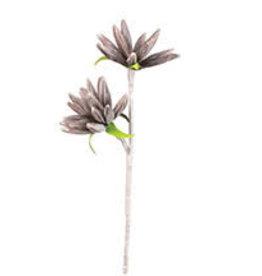 KALALOU Botanica #1314