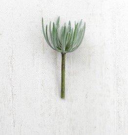 Artificial Grey Succulent 9.5IN