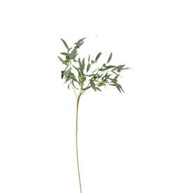 KALALOU Botanica#963